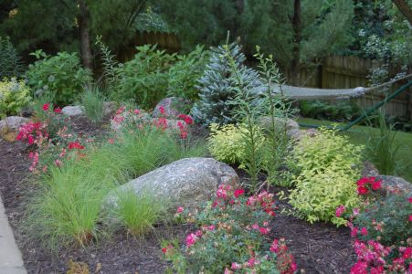 a garden with ornamental grasses, large rocks, and pink roses