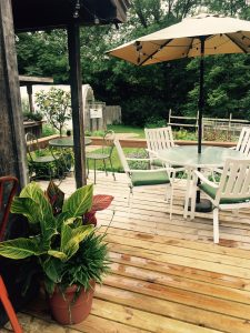 deck with patio furniture and potted plants