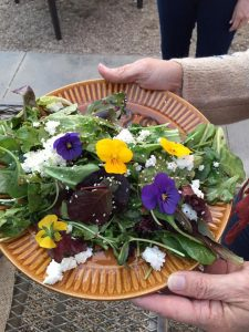 salad plate with greens and viola flowers